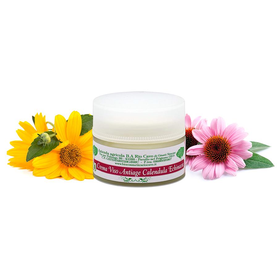 Crema viso antiage con calendula ed echinacea